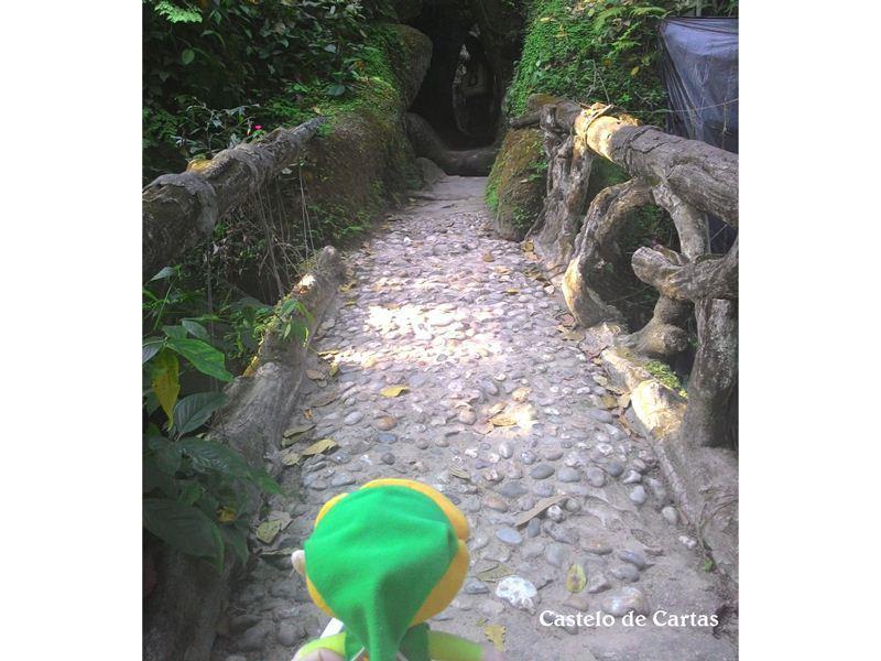 Andou por várias trilhas e vários cantinhos misteriosos e aventurosos do parque...